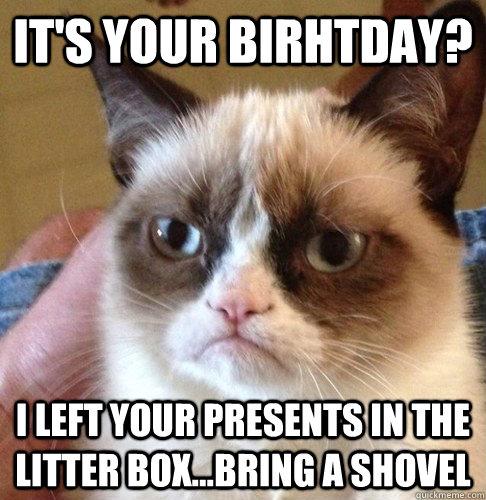 A Birthday In Memes Unto Adoption