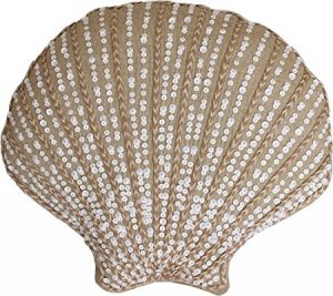 shell_pillow